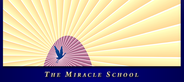 The Miracle School